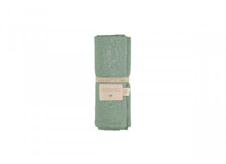 Baby Love swaddle eden green